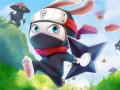 Spēles Ninja Rabbit